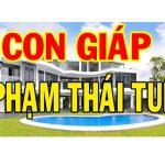 Sao Thái Tuế là gì? Bàn về Thái Tuế và cách giải hạn