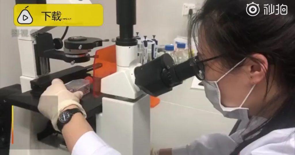 Lý do bệnh viện Trung Quốc mua phân người giá tiền triệu